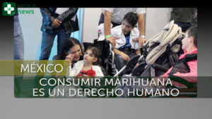 imagen padres cannabis expoweed mexico